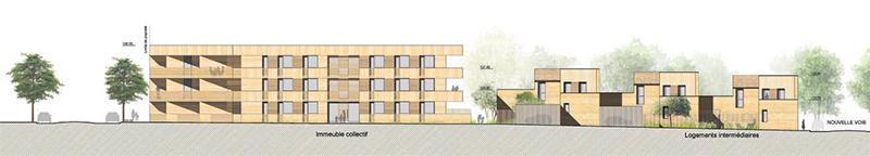 arquitectura-y-empresa-jean-aline-harari