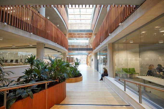 arquitectura_ Alder  Hospital_planta baja
