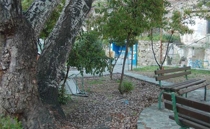 árboles en jardines
