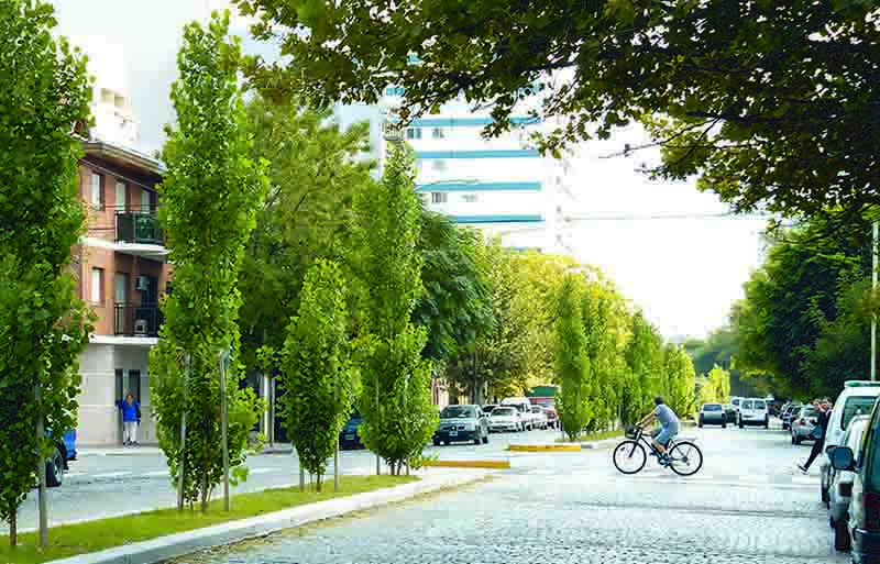 árboles en las ciudades