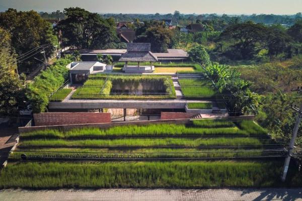 arquitectura_ASA-Lanna_vegetación