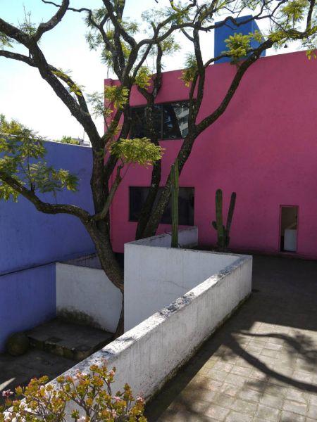 arquitectura barragán vista arbol