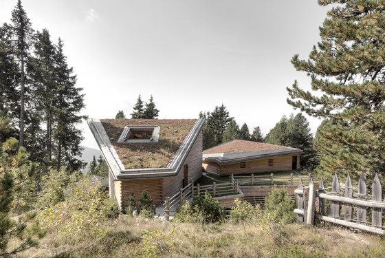 arquitectura_bergmeisterwolf_cubiertas