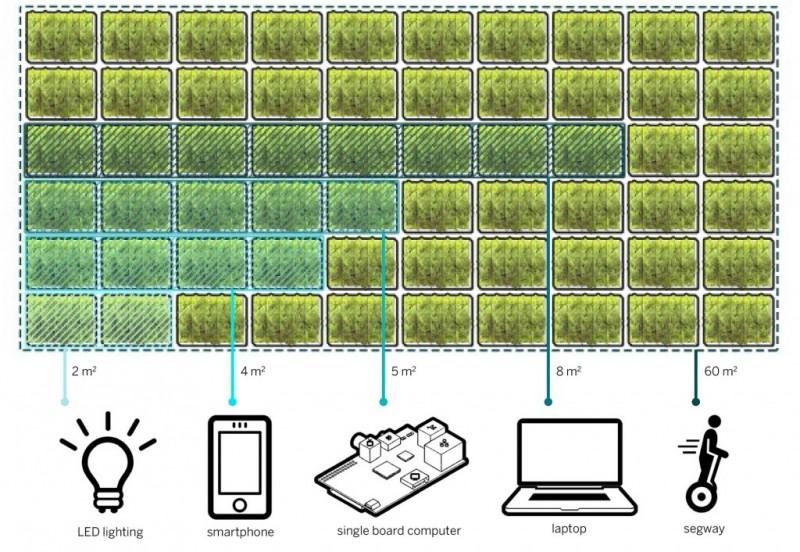 arquitectura biológica_esquema producción de energía