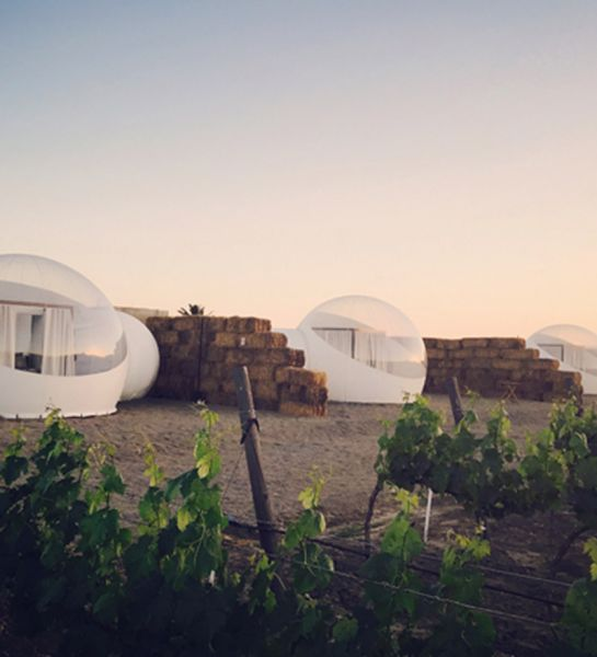 Arquitectura _ Campera Hotel_valle de Guadalupe vista valle
