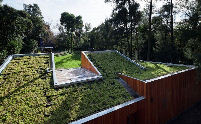 Arquitectura_Casa_AA _ vista exterior cubierta ajardinada