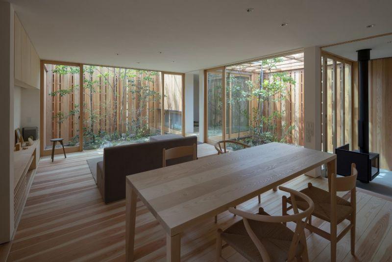 arquitectura_casa en Akashi_Arbol_cocina salón