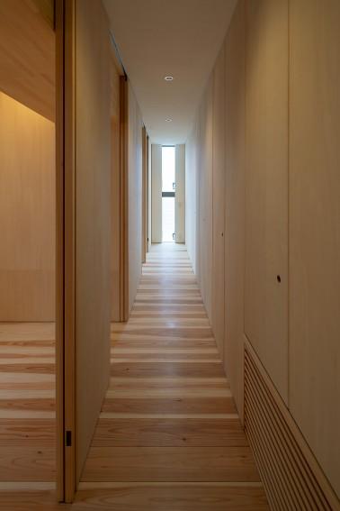 arquitectura_casa en Akashi_Arbol_corredor