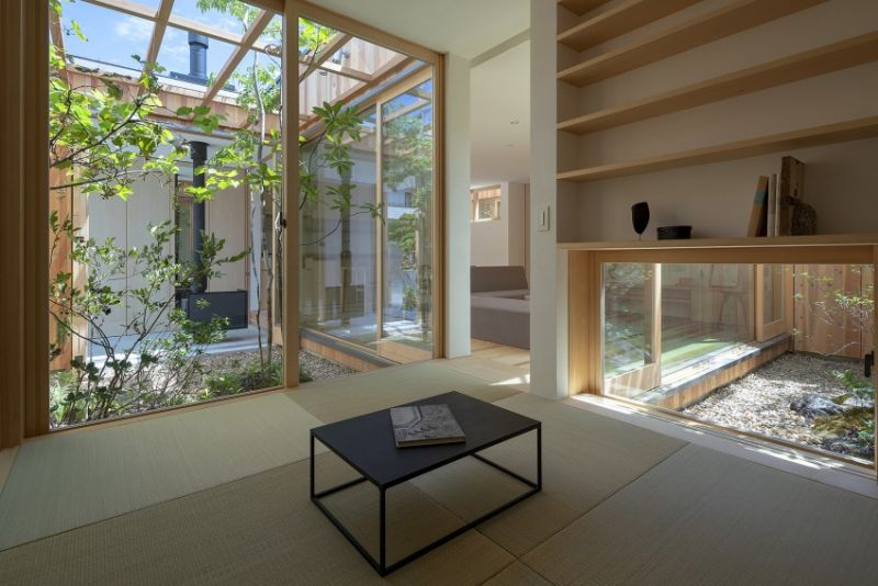 arquitectura_casa en Akashi_Arbol_sala