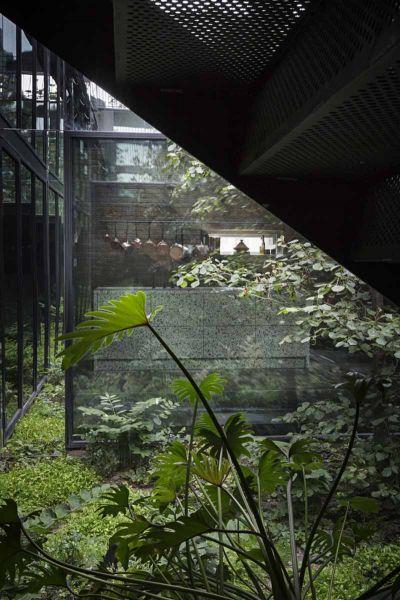 Arquitectura_Casa para Peter Krasilnikoff_ patio vegetacion