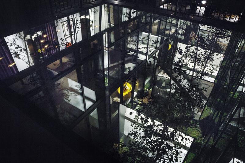 Arquitectura_Casa para Peter Krasilnikoff_ imagen del patio vegetación interior