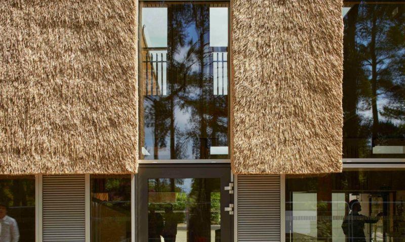 arquitectura_centro empresarial_detalle fachada