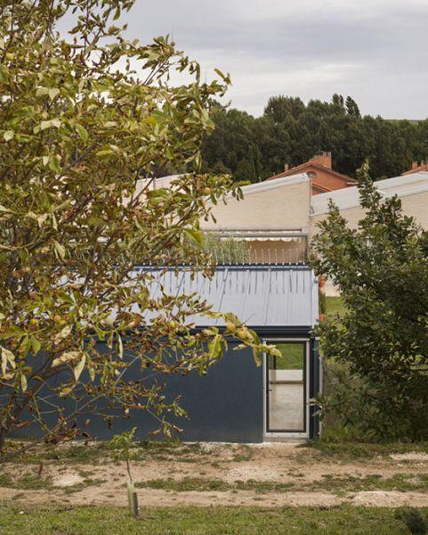 arquitectura y empresa ciclo de entrevistas exclusivas taller basico casa para un hombre y un arbol 01