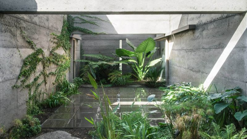 arquitectura_cloister-house-perth-MORQ-architects_patio