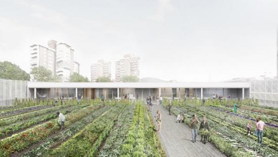 arquitectura_cubierta huerto_mercado Vall d'Hebrón