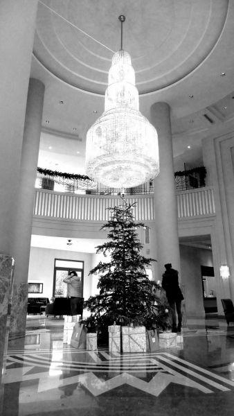 desayunos arquitectura yempresa lafarge holcim hotel westin foto wstin navidad