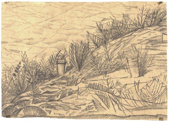 Dibujos preliminares de las plantas en el acceso a la Acrópolis, Dimitris Pikionis. Benaki Museum