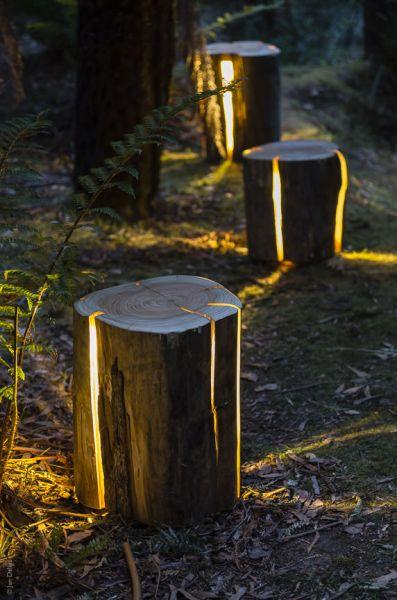 Arquitectura e iluminación_Duncan Meerding_Stump_usos
