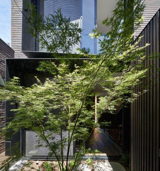 arquitectura_ELGINSTRESIDENCE_patio arbolado