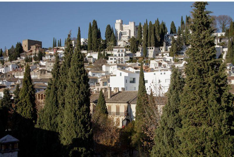 arquitectura_Elisa Valero_viviendas Realejo_entorno