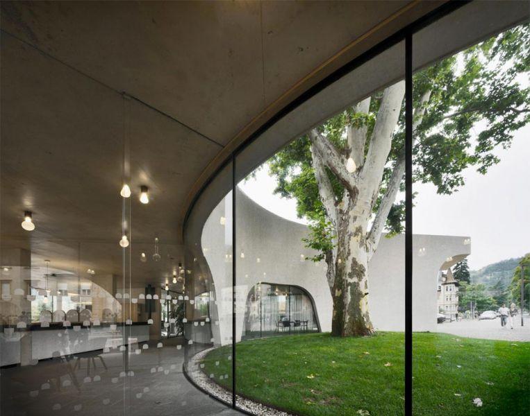 Imagen del interior del edificio y patio alrededor del árbol centenario