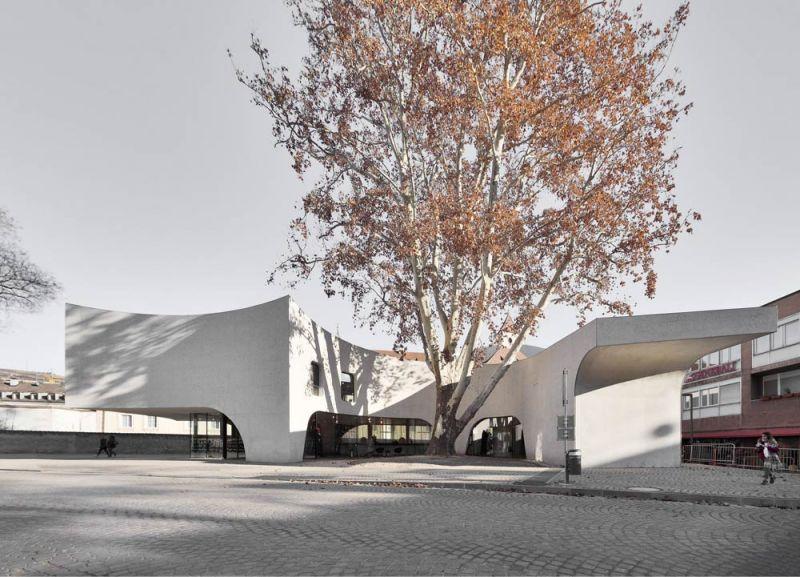 Imagen exterior del Treehugger, el edificio abraza el árbol preexistente