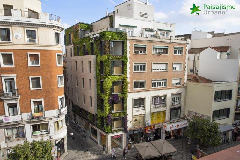 arquitectura jardin vertical paisajismo urbano madrid calle montera edificio