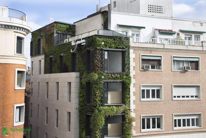 arquitectura jardin vertical paisajismo urbano madrid calle de la montera madrid edificio azotea