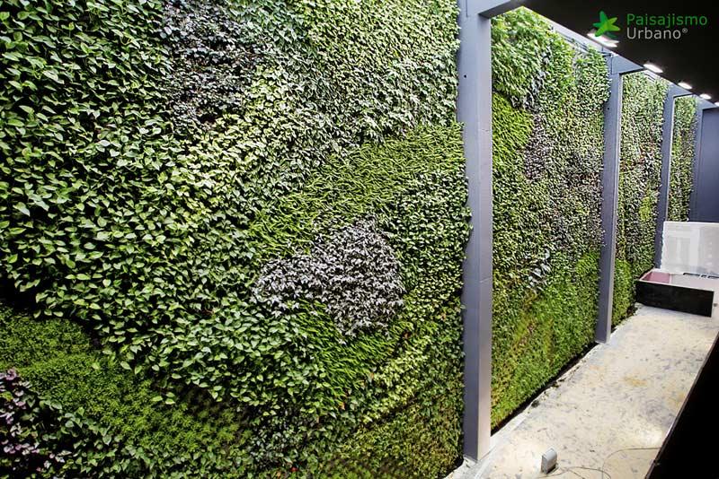 arquitectura jardin vertical paisajismo urbano restaurante balamo pared plantas alcorcon