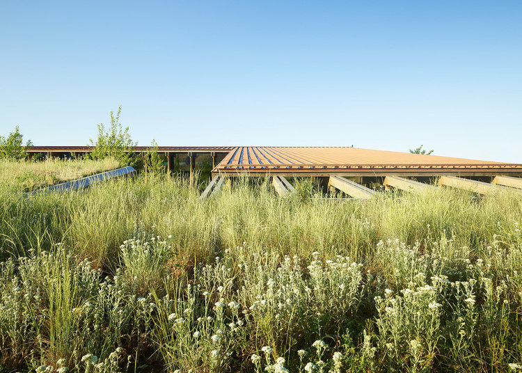 arquitectura_Graham Baba Architects_washington fruit company_cubiertas