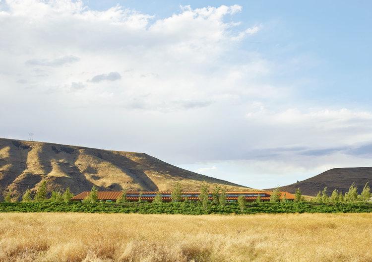 arquitectura_Graham Baba Architects_washington fruit company_entorno