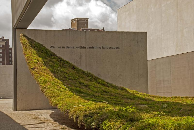 Green, Nomad Studio , arquitectura, arte, alfombra, Museo Arte Contemporáneo de St. Louis (CAM), verde