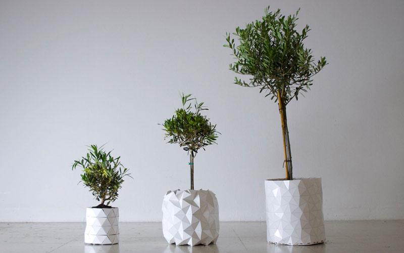 arquitectura, diseño, Growth, Studio Ayaskan, maceta, origami