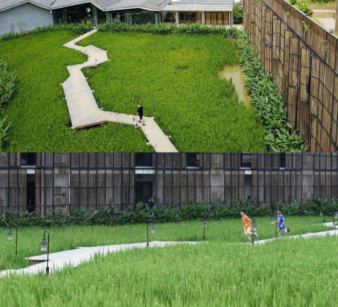 arquitectura_hedulpaddy_pasarela