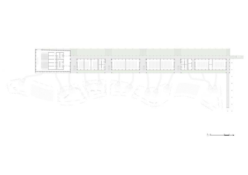 arquitectura_IDOM_universidad Senegal_planta