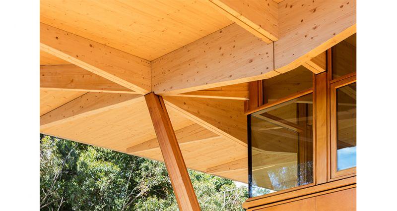 arquitectura_incubator_architectus_estructura