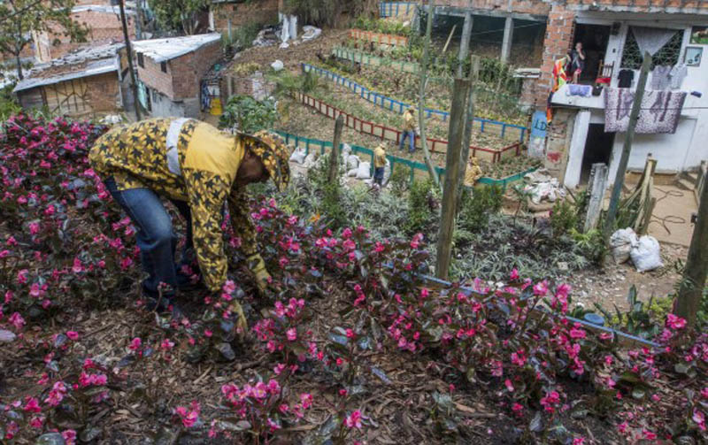 arquitectura_ imagen de recuperación punto negro Medellín