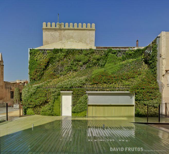 arquitectura_jardín vertical en Elche7