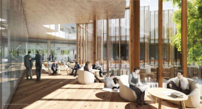 arquitectura accoya madera estructural fachada proyecto Herzog De Meuron Astrazeneca interior