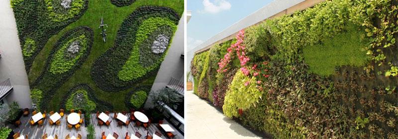 M s que muros verdes del arquitecto fernando ortiz for Muros verdes naturales