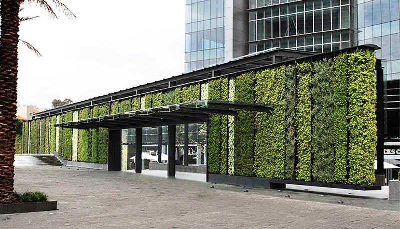 M s que muros verdes del arquitecto fernando ortiz for Muros verdes verticales