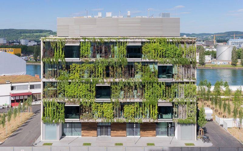 Arquitectura en verde las fachadas vivas de rahul for Vogt landscape architects