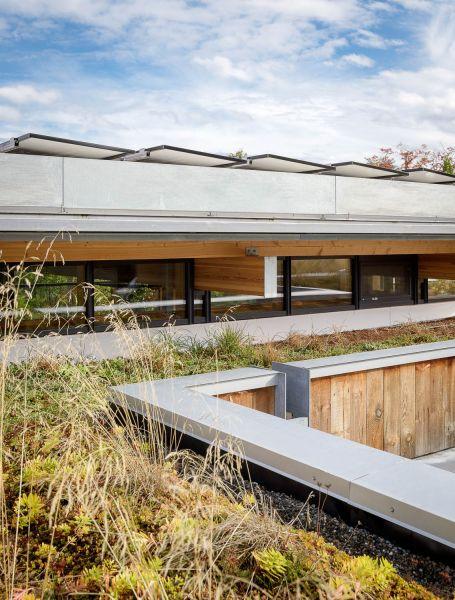 arquitectura_Olson Kundig_City cabin_cubierta