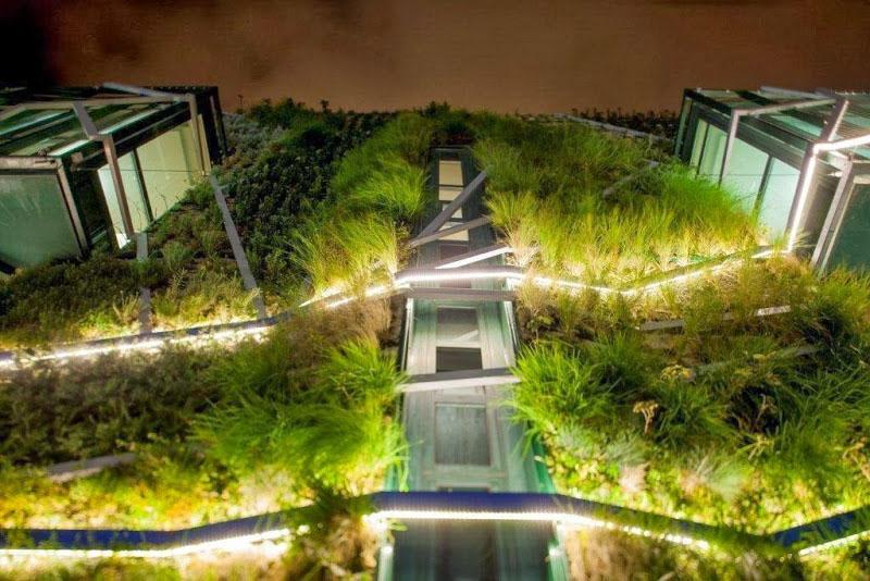 Rehabilitaci n energ tica jard n vertical con especies for Ciudad jardin vitoria