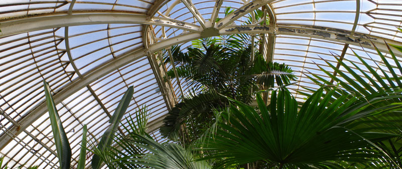 arquitectura, historia, Decimus Burton, Palm House, La casa de las palmeras, Londres