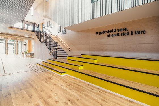 arquitectura_PIR II_new evjen school-architonic_gradas
