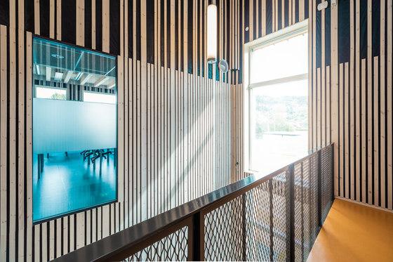 arquitectura_PIR II_new evjen school-architonic_ventanales