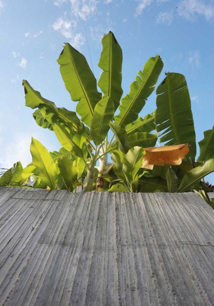 arquitectura Formzero Planter Box house fotografía Ameen Deen macetero jardinera