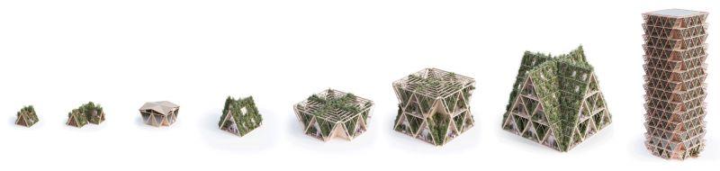arquitectura Precht Farmhouse huertos en altura render evolución del módulo