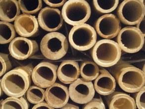 arquitectura_suelos bambu_materia prima